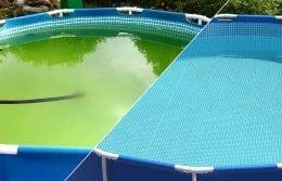 Проблемы с водой в бассейне: причины и решения.